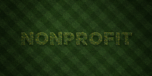 NONPROFIT -  fresh Grass letters with flowers - 3D rendered