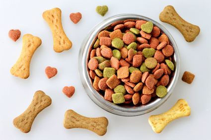 Dog food in the bowl and bone shaped biscuits